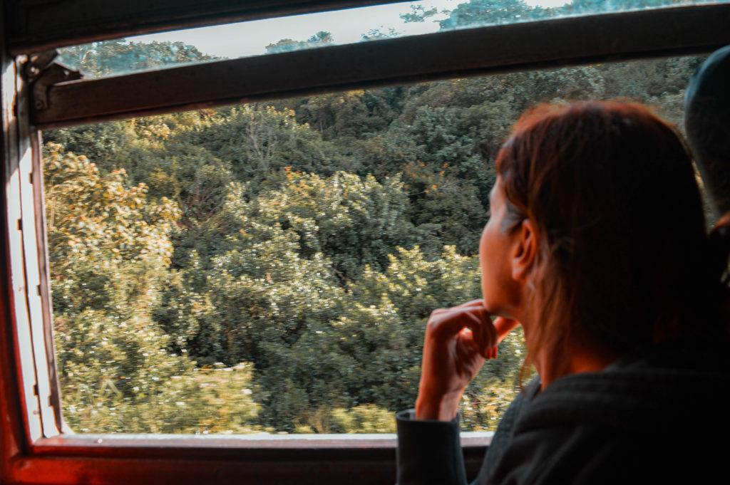 paesaggio treno sri lanka