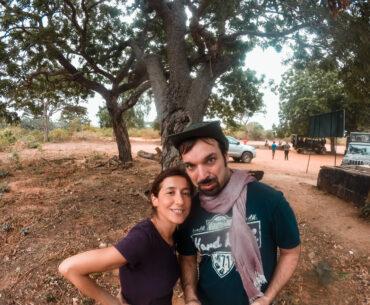 safari yala park